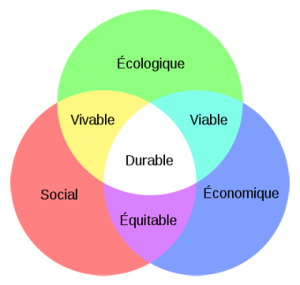schema_developpement_durable