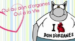 don_organes_chat_geluck_470x260