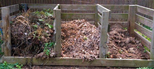 Comment r ussir un bon compost sans nuisance attention - Moucherons maison ...