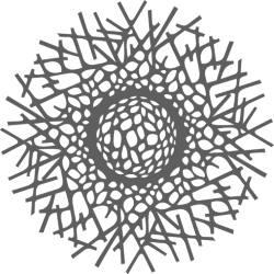 samso_logo_academie_250x250