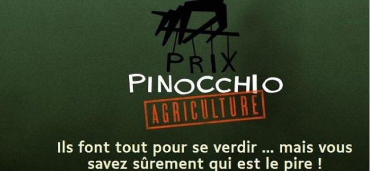 Prix Pinnochio 2020 votez